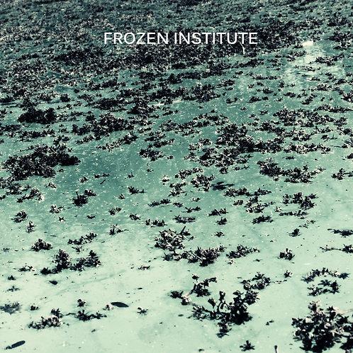 Frozen Institute - Frozen Institute (2015)
