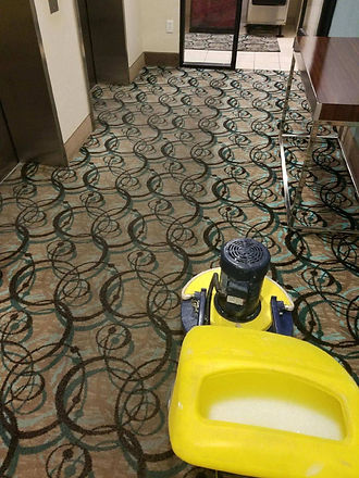 cimex cleaning