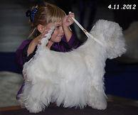 Sandrahandling4112012001.jpg