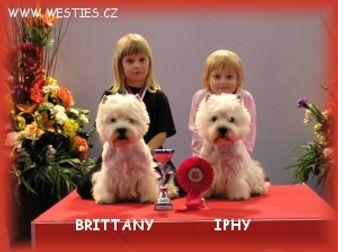 Iphyatinanitra072012ne.jpg