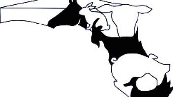 Alachua County Youth Fair & Livestock Show