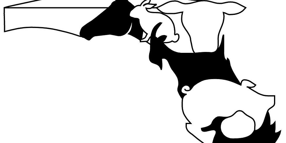 2020 Alachua County Youth Fair & Livestock Show