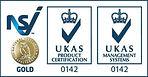 NSI Gold Logo.jpg