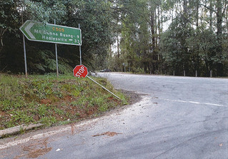 Putting a stop to Mount Donna Buang hoons