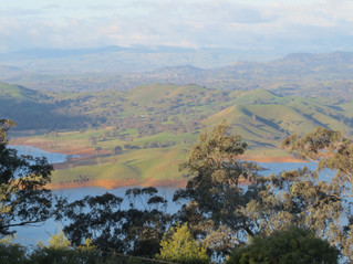 Lake Eildon left dry for tourism support