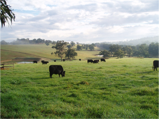 Protecting strategic agricultural land