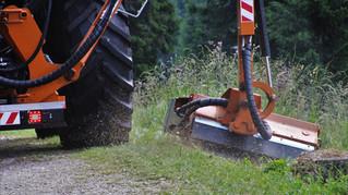Roadside vegetation ignored over summer