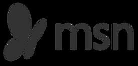 MSN_logo_symbol-700x333.png