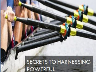 Secrets To Harnessing Powerful Employee Performance
