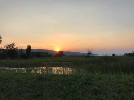 Inlineskating um den Greifensee