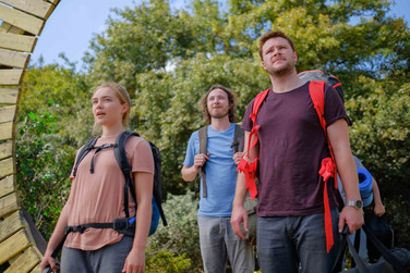 Don't Do Drugs … At Least Before Watching 'Midsommar'