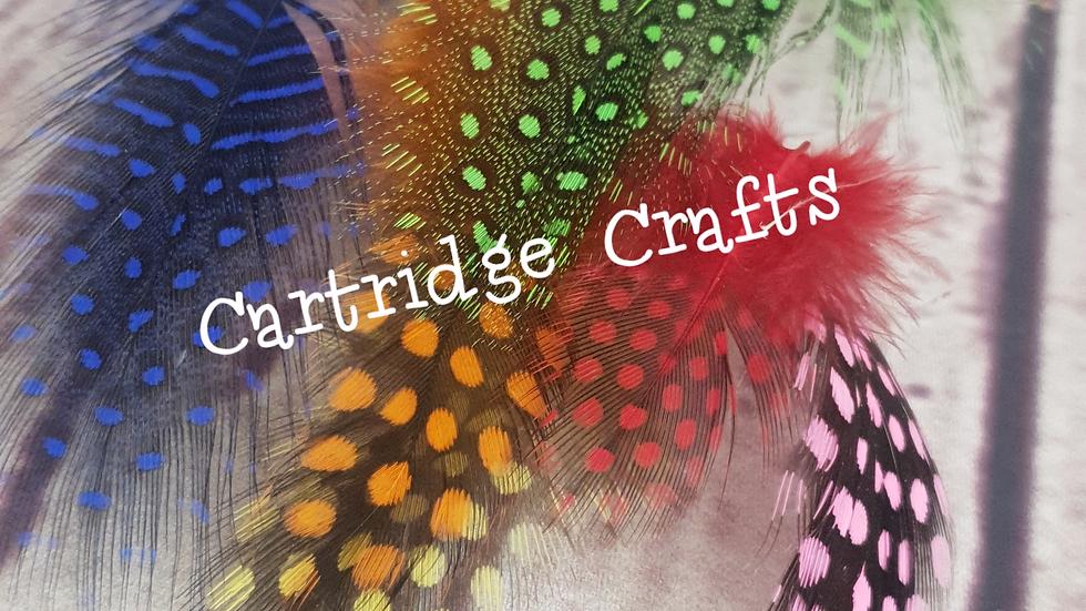 Multi Coloured Guinea Fowl Feathers