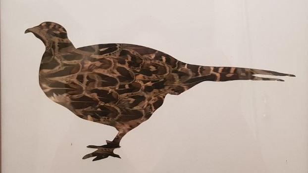 Hen Bird Pheasant Feather Silhouette