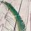 Thumbnail: Peacock Sword Feather x 1