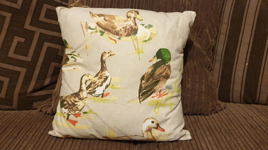 Duck Cushion (1)