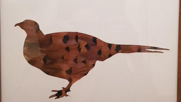 Cockbird Pheasant Feather Silhouette