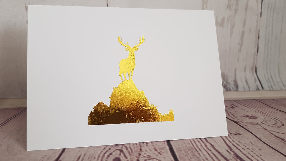 Stag on Hill