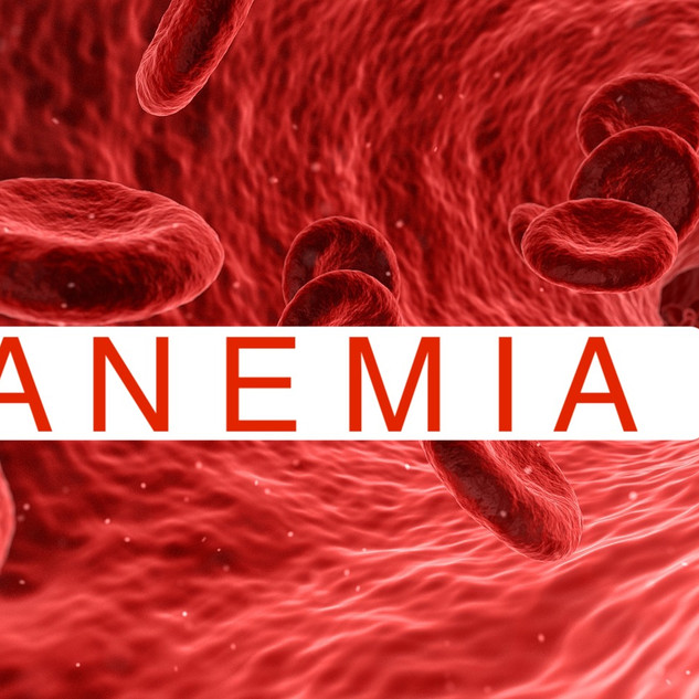10 Power Foods To Get Rid Of Anemia
