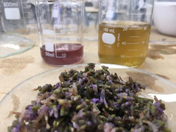Aromatologia e Pesquisa