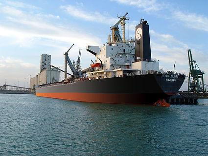 BRITONA SHIP.jpg