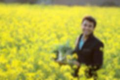 Golden Harvest23.jpg