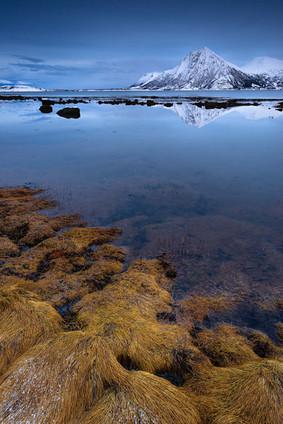 Fjord at dusk
