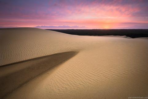 Aube rosée sur la Dune