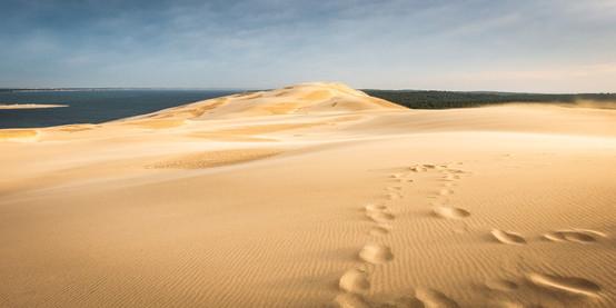 Petit matin sur la Dune
