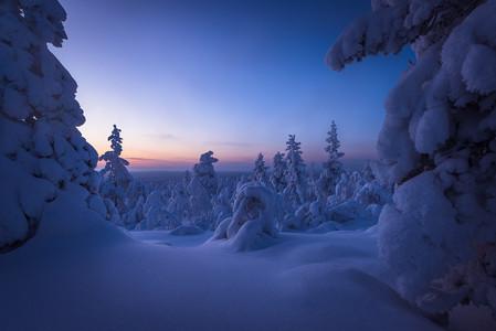 Heure bleue en Laponie finlandaise lors d'un voyage photo