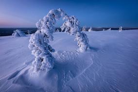 The frozen kiss