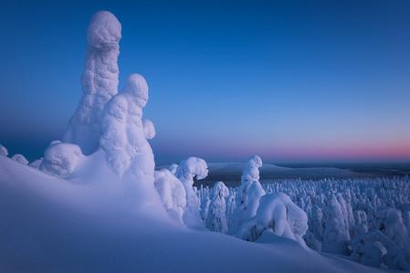 Sapins enneigées aux formes humaines en Finlande l'hiver