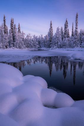 The snow bibendum