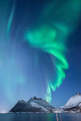 Lights of Senja