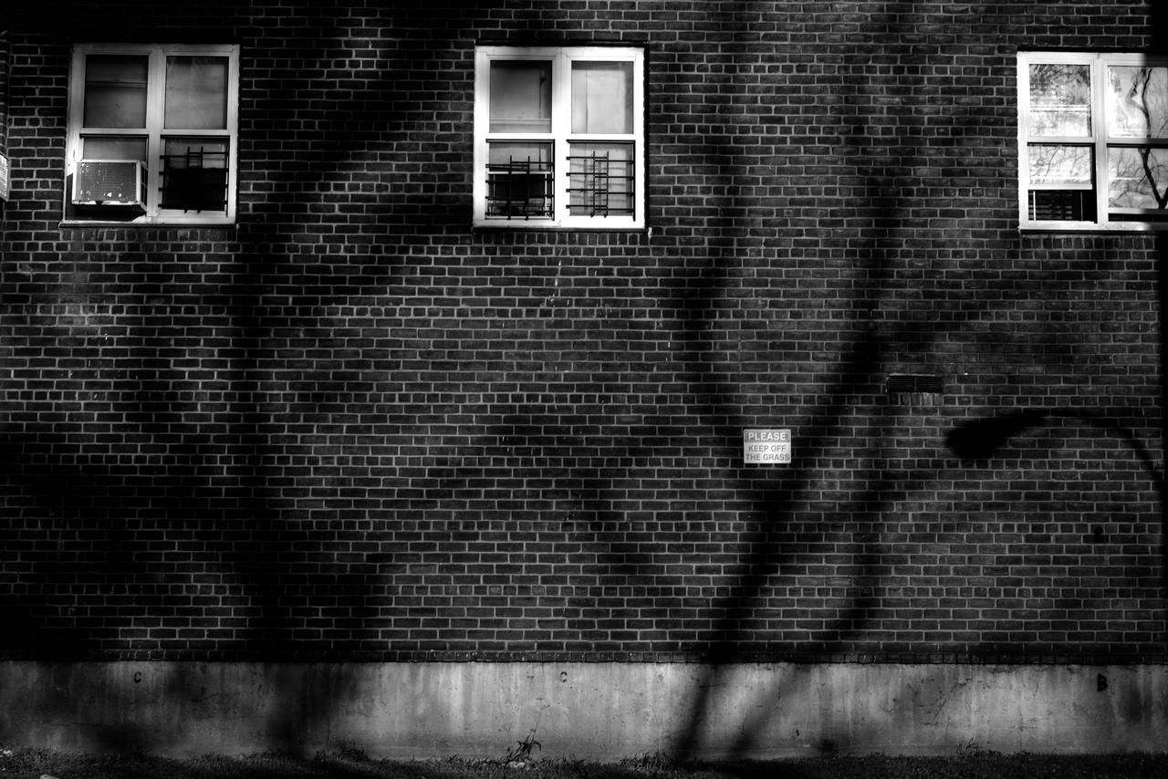 21 Dystopia Landscape Vincenzo Pisani