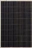 UE Solar ZHM180P.webp