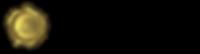 wealth advantage group logo-09.png
