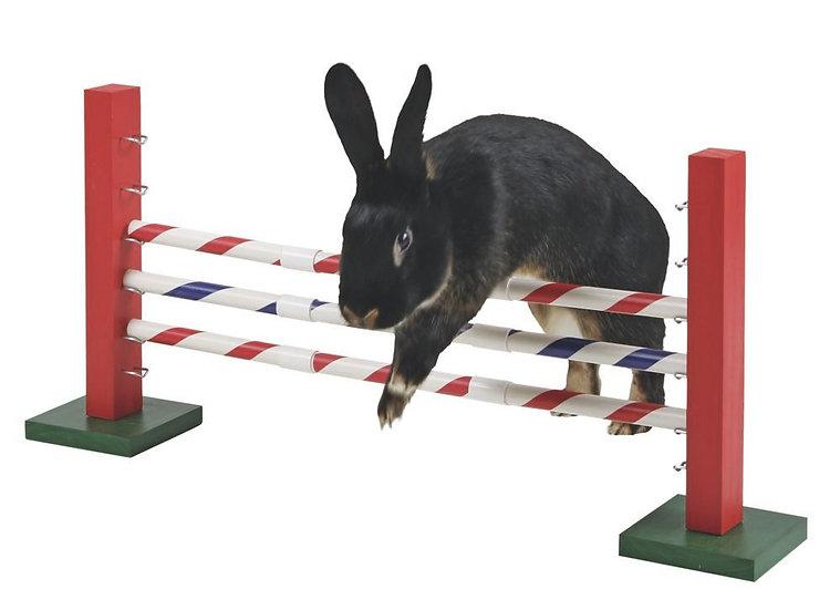 Saut d'obstacle LAP (jeu d'agilité)