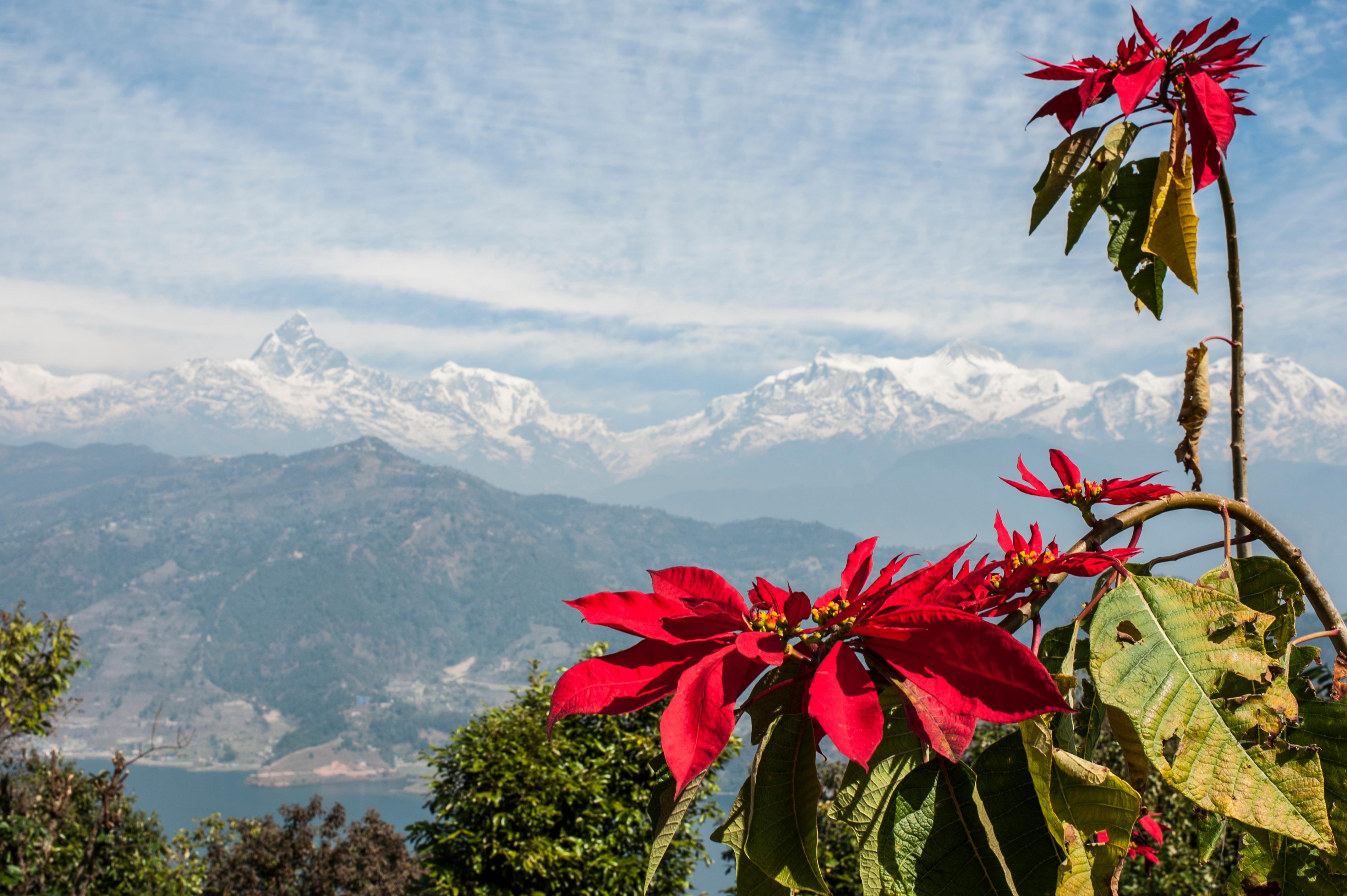 pokhara1-215