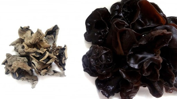 Black Fungus Small  | China