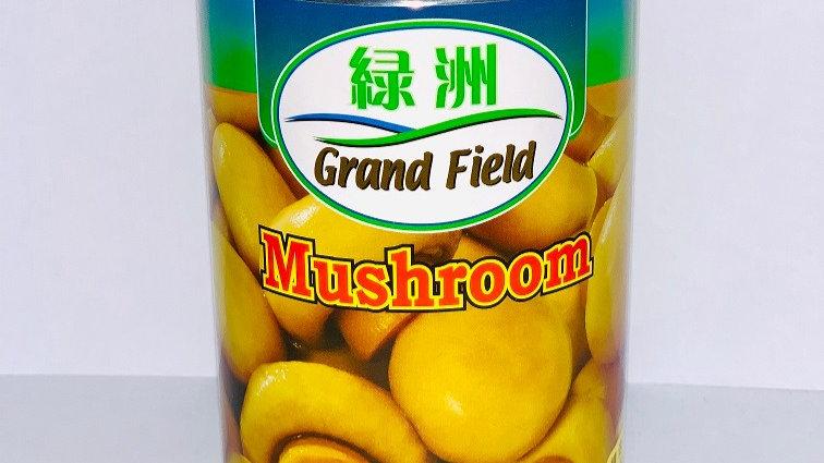 Button Mushrooms Whole  | Grand Field