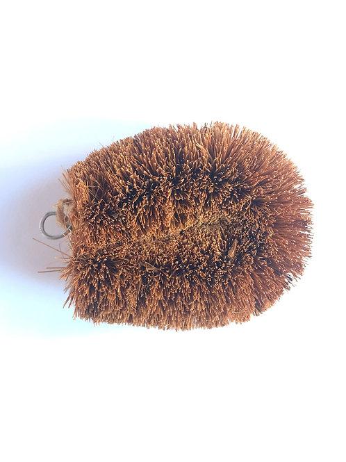 Spazzola in fibra di cocco