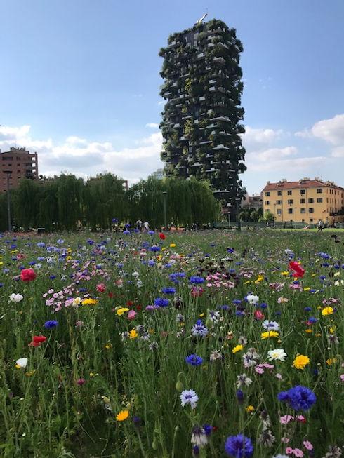 Negozi zero waste a Milano con consegna su appuntamento
