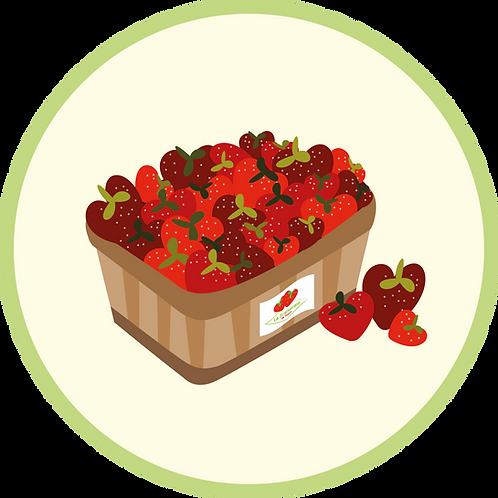 Barquette de fraises de 250 grammes