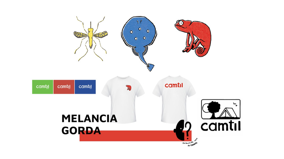 Habemus CARA DO CAMTIL