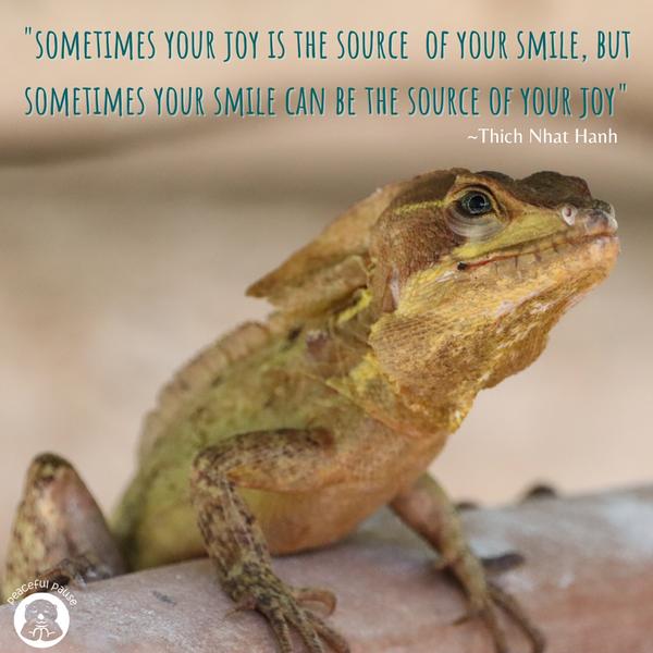 smiling lizard meme.png