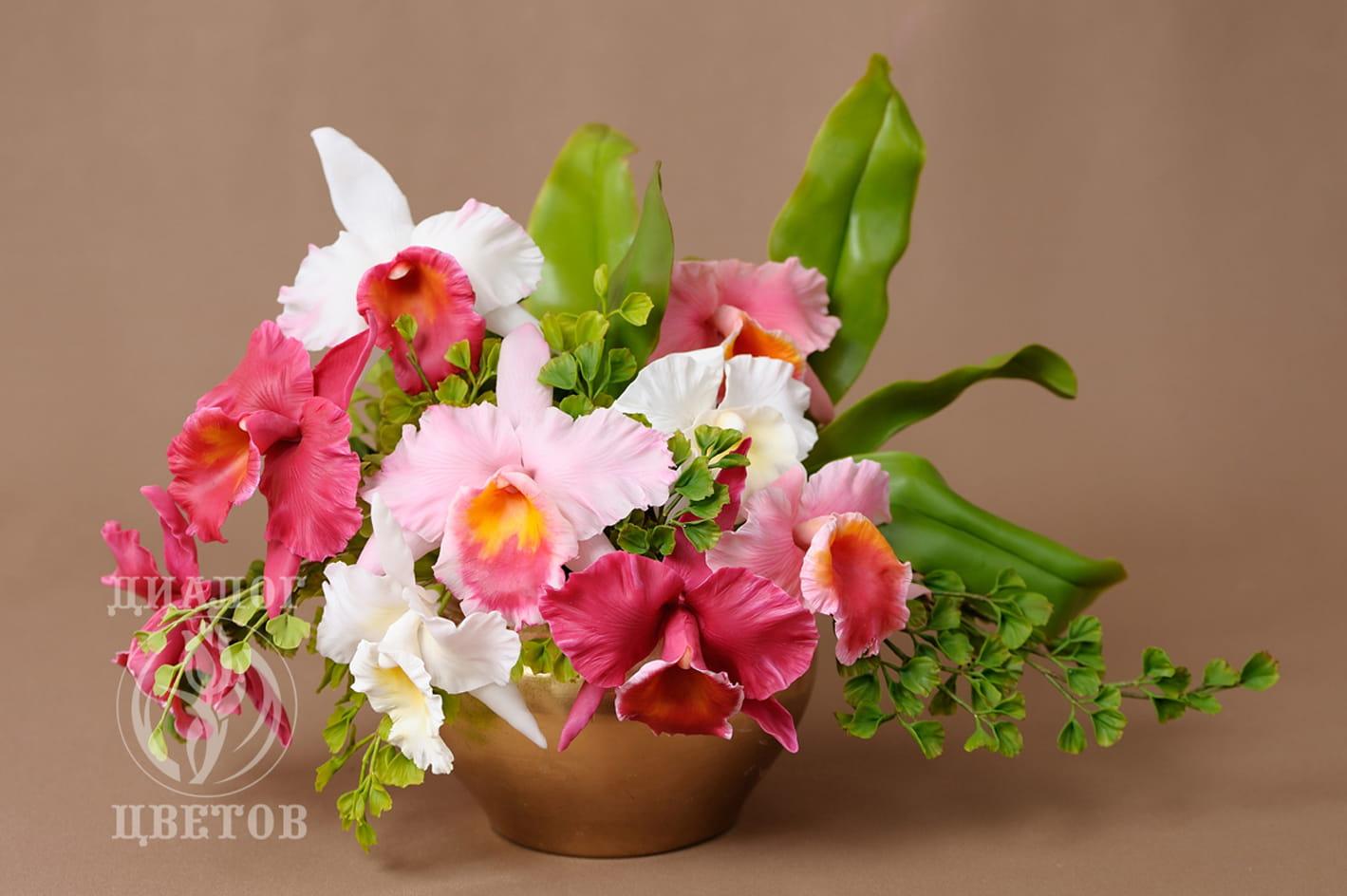 """""""Орхидеи"""""""