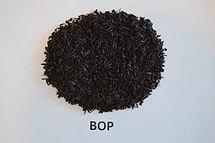 bop-1.jpg