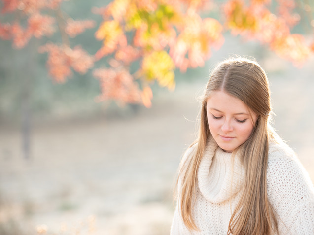 Fall Contemplation Tracey Medcalfe Photography