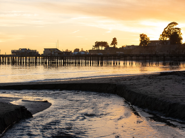 Capitola Tracey Medcalfe Photography