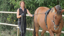 Keeping things interesting to keep your horse healthy